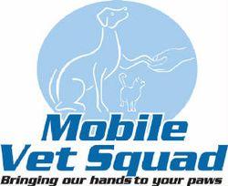 MobilevetsquadlogoRPG.jpg.w300h245