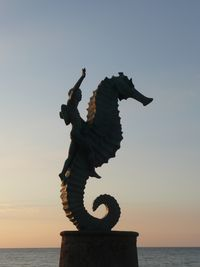 SLOANE_Sea Horse-Puerto Vallarta By Michael Sloane Photography