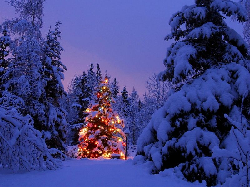 christmas snow scenes wallpaper